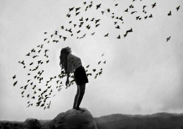 Kvinde står på en stor sten omringet af fugle hun acceptere at være midtpunktet af fuglenes opmærksom
