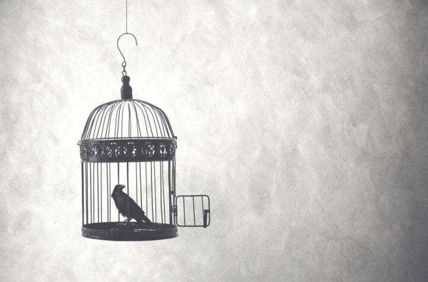 Fugl i bur symboliserer tanken bag citater af Alfonsina Storni