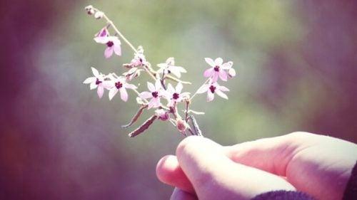 Hånd holder en blomst