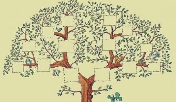 En blank tegning af et stamtræ