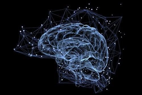Fem minutters stilhed har en effekt på hjernen