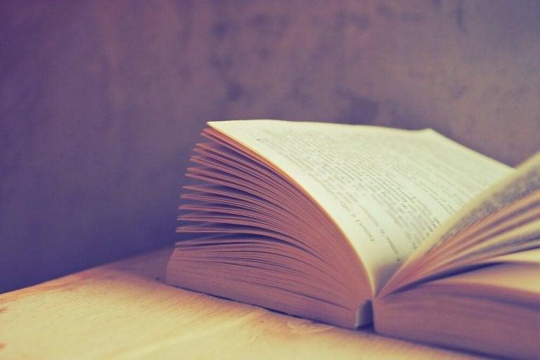 Nærbillede af åben bog
