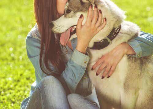 6 fordele ved at have kæledyr, der giver dig lyst til at få et