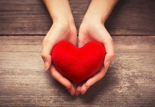 Hænder holder hjerte og giver godkendelse