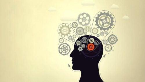 Øget intelligens: 7 geniale tricks til større intelligens