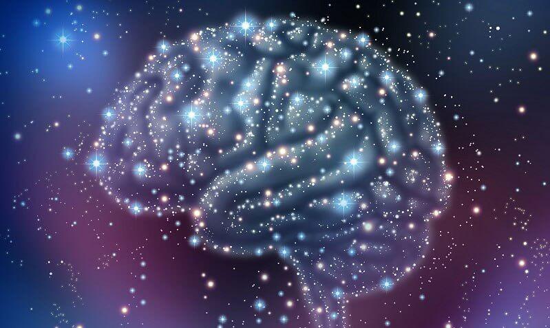 Hjernen er stadig et mysterium for os