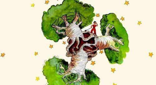 Et Baobabtræ i hjertet - Refleksioner om Den lille Prins