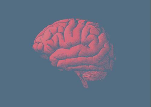 Hjernen bliver ældre: Hvorfor? Svaret ligger i dine gener