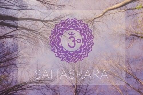 Symbolet for Sahasrara, en af de 7 chakraer