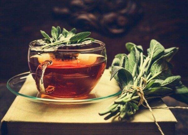 Der er mange fordele ved salvie te