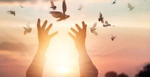 Hænder slipper fugle fri