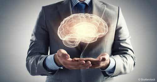 7 gåder ved den menneskelige hjerne
