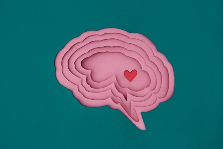 Hjerte i hjerne