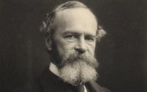De 10 bedste citater af William James