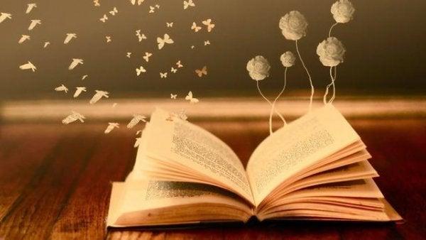 bøger er spejle