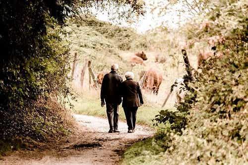 Kollektiv hukommelse og historier fra bedsteforældre