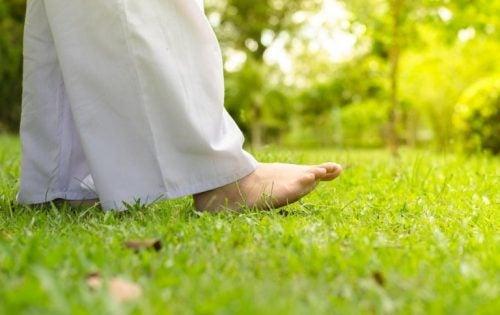 Fødder, der går på græs