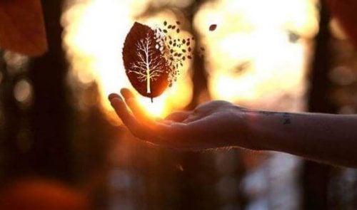 Svævende blad over hånd
