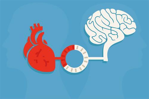 Hjertet kommunikerer med hjernen for at skabe hjerteharmoni