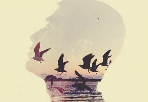 Et hoved med falmede fugle og et hav