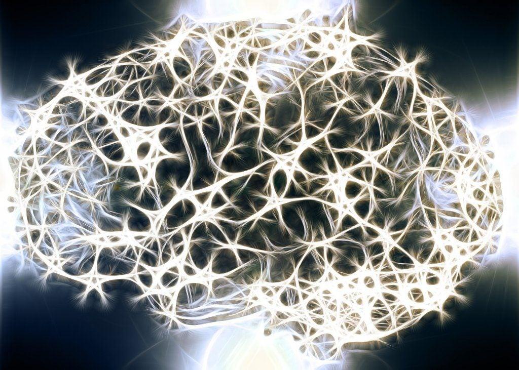 Vigtigheden af hvid substans i vores nervesystem