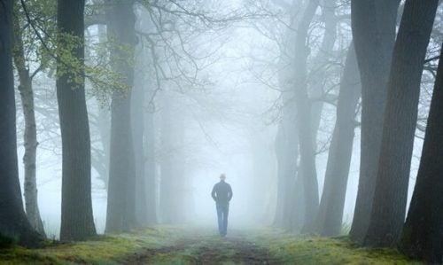 Skovtesten og dens plads i psykoanalyse