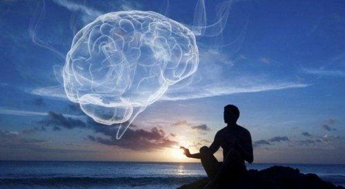 Oplev wellness: Balance i krop og sind