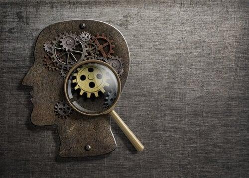 8 grundlæggende psykologiske processer