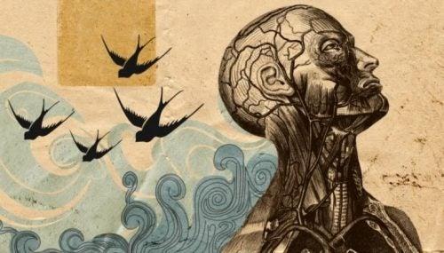 Menneske af sten med hav og fugle bag sig
