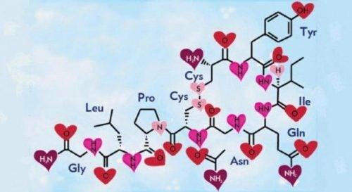 Tegning illustrerer forholdet mellem hormoner og humøret