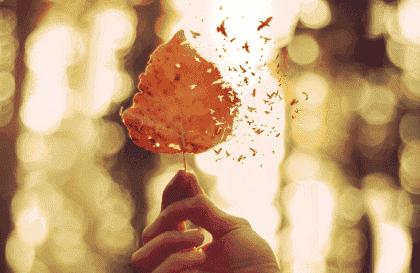 5 nøgler til at udtrykke følelsesmæssig smerte