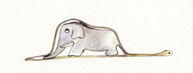 tegning af elefant og slange