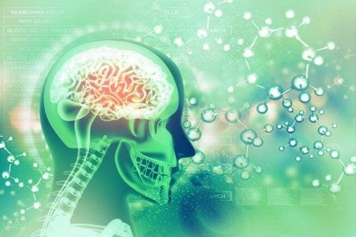 Silhuet af menneske, hvor hjernens aktivitet er synlig