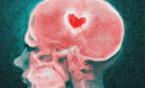Din hjerne under et brud: Videnskaben om et knust hjerte