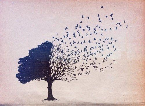 træ bliver til fugle