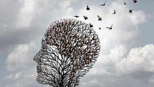 Heuristik - genvejen i din hjernes funktion