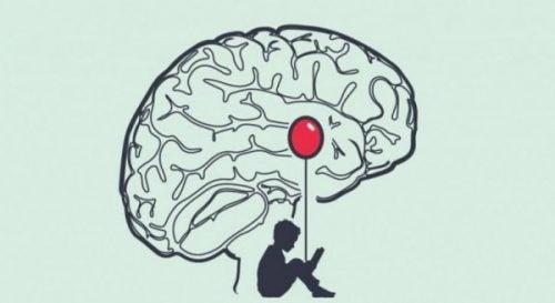 Mandelkernen ophører med at reagere på løgne i en løgners hjerne