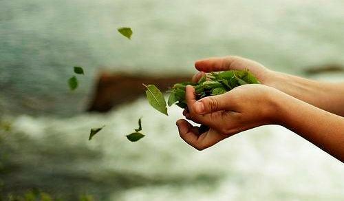 Hænder kaster blade