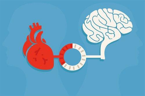 Fornuft og følelser: Balance, der avler gode beslutninger