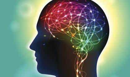Anandamid: En neurotransmitter, der påvirker glæde