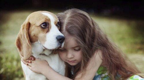 Pige krammer hund