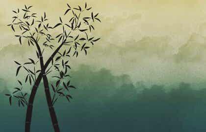 Være som bambus: Tålmodig, stærk og fleksibel