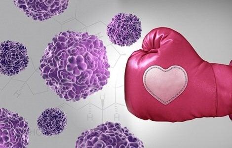 En lyserød boksehandske, der banker kræftceller