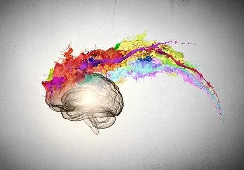 En kunstnerisk skildring af en optimists hjerne med farverig eksplosion