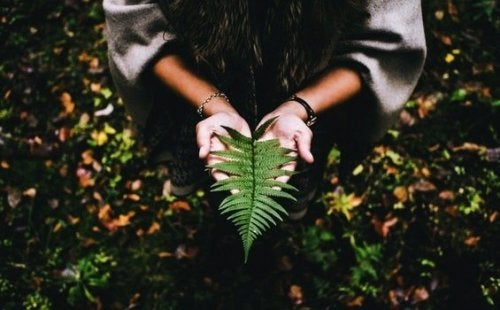 Det kræver ro og fred at finde mening i livet