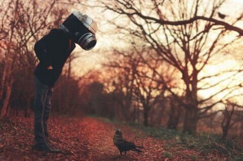 Mand med kamera som hoved kigger på fugl