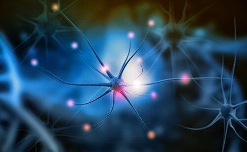 Hvad er neurogenetik og hvorfor er det vigtigt?