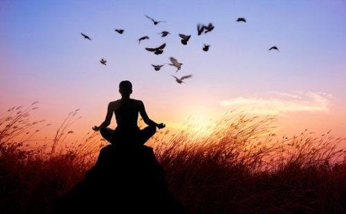 Person mediterer på mark med fugle flyvende omkring