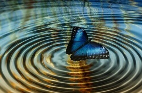 "Kaosteori eller ""sommerfugleeffekten"""