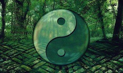 7 citater af Laozi til personlig udvikling